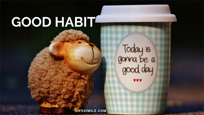 Daily Good Habits to Have for A Better Life