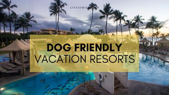 dog friendly vacation resorts