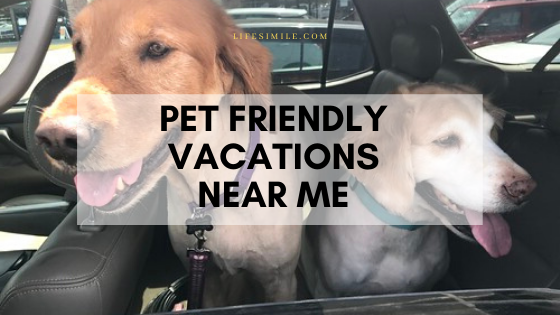 one of the pet friendly vacations near me.