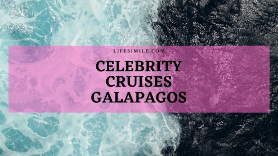 Celebrity Cruises Galapagos – Travel Guide
